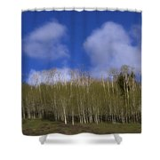 Aspen Dream Shower Curtain