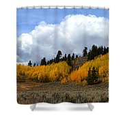 Aspen Hillside Shower Curtain