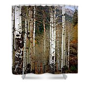 Aspen In The Rockies Shower Curtain