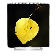 Aspen Leaf  In Fall Shower Curtain
