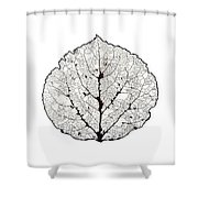 Aspen Leaf Skeleton 1 Shower Curtain