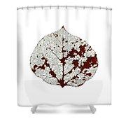 Aspen Leaf Skeleton 2 Shower Curtain