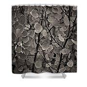 Aspen Leaves Shower Curtain