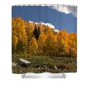 Aspen On The Road To Telluride Dsc07397 Shower Curtain