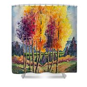 Aspen Overlook Shower Curtain