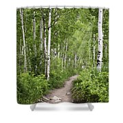 Aspen Path Shower Curtain
