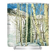 Aspen Shelter Shower Curtain