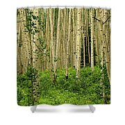 Aspen Summer Shower Curtain