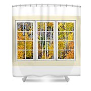 Aspen Tree Magic Cream Picture Window View 3 Shower Curtain by James BO  Insogna