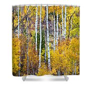 Aspen Tree Magic Shower Curtain