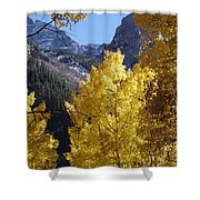 Aspen Window Shower Curtain