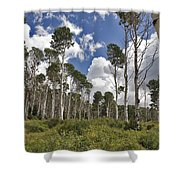 Aspen Grove Shower Curtain