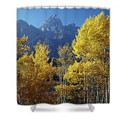 1m9356-v-aspens And The Grand Teton Shower Curtain