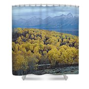 Aspens And The Tetons Shower Curtain