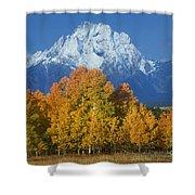 Aspens Fall Mount Moran Grand Tetons National Park Wyoming Shower Curtain