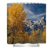 1m9352-aspens In Autumn And The Teton Range Shower Curtain