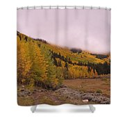 Aspens In The Mist Shower Curtain