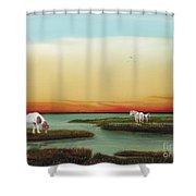 Assateague Island Sunset Shower Curtain