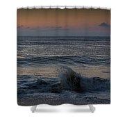 Assateague Waves Shower Curtain