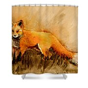 Assessing The Situation Antiqued Shower Curtain