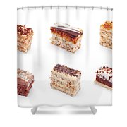 Assorted Cake Shower Curtain