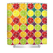 Assorted Citrus Pattern Shower Curtain