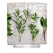 Assorted Fresh Herbs Shower Curtain