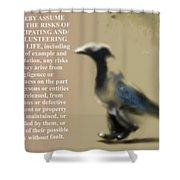 Assuming Corvus Shower Curtain