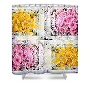 Aster Mix 01 Shower Curtain