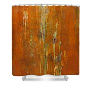At Creation Shower Curtain