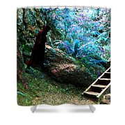 At Home In Her Forest Keep - Pacific Northwest Shower Curtain