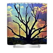 At Life's End There Is Light Shower Curtain