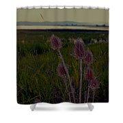At Nine Pipes Montana Shower Curtain