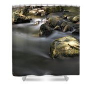 At The Banias River 2 Shower Curtain