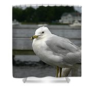 At The Boat Landing Shower Curtain