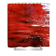 At The Car Wash 10 Shower Curtain