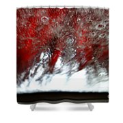 At The Car Wash 14 Shower Curtain