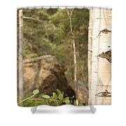 At The Continental Divide Shower Curtain