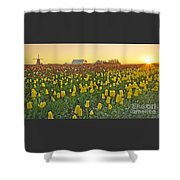 At The Crack Of Dawn Shower Curtain