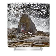 At The Edge Of The Waterfall Shower Curtain
