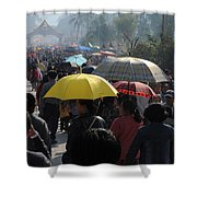 At The Elephant Festival Shower Curtain