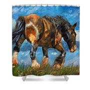 At The End Of The Day Shower Curtain by David Stribbling