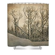 At The End Of The Road Shower Curtain