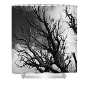 At The End Of Time Shower Curtain