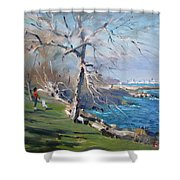 At The Park By Lake Ontario Shower Curtain