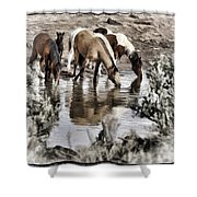 At The Watering Hole 1 Shower Curtain