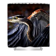At Waters Edge - Great Blue Shower Curtain