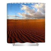 Atacama Desert Wilderness Shower Curtain