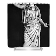 Athena Or Minerva Shower Curtain