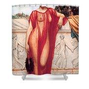 Athenais Shower Curtain